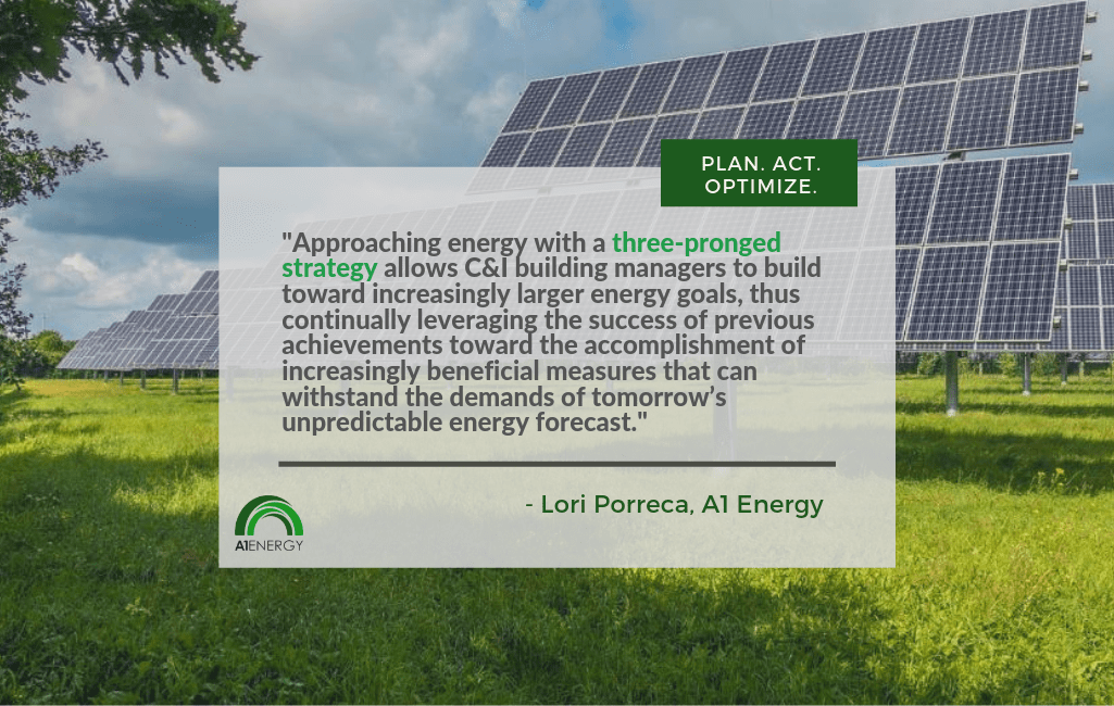 quote from Lori Porreca with Solar PV background